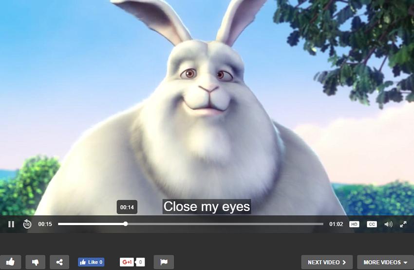 add-subtitle-2